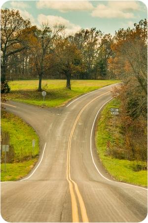 Roadfork